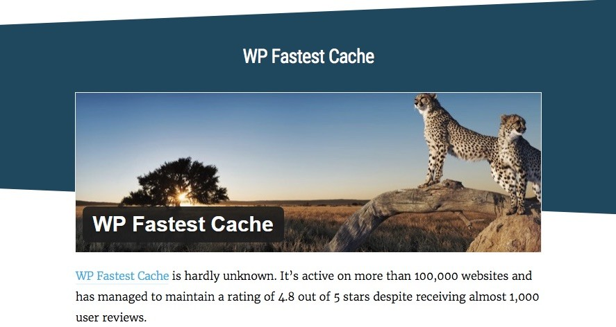 the_best_caching_plugins_for_wordpress_you_ve_never_heard_of_-_wpmu_dev